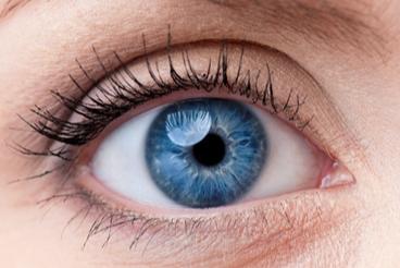 Up close image of a blue eye